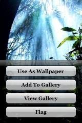 Wallpaper 2.0