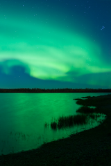 aurorakuenzli