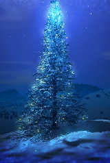 bluechristmastree