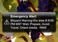Government Alerts, Amber Alerts & Emergency Alerts (and How to Turn Them Off)