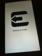 Setting up Cydia...