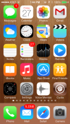 Cydia is now installed. See the bottom right icon.